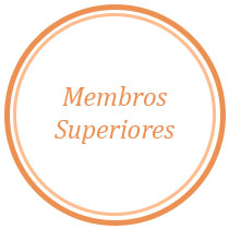 Procedimento Membros Superiores - Selfday